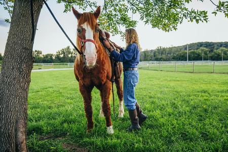 Caucasian Woman Brushing Hair Of Horse On Farm