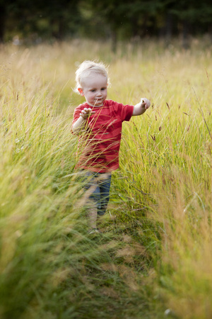 Caucasian boy playing in tall grass