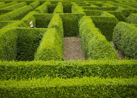 Caucasian businessman giving thumbs up in hedge maze