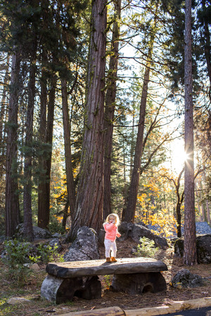Caucasian baby girl standing on picnic table in forest