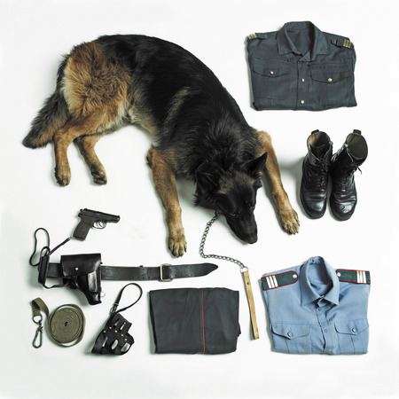 Organized police uniform and equipment with dog