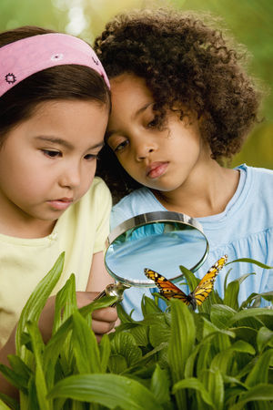 Girls looking at butterfly with magnifying glass
