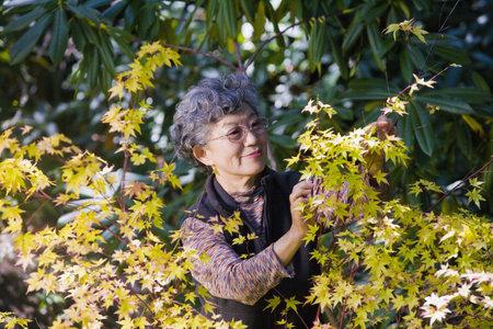 Senior Japanese woman gardening