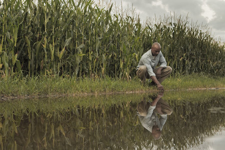 African American farmer squatting near water and crops