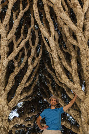 Caucasian man standing in dragons blood tree