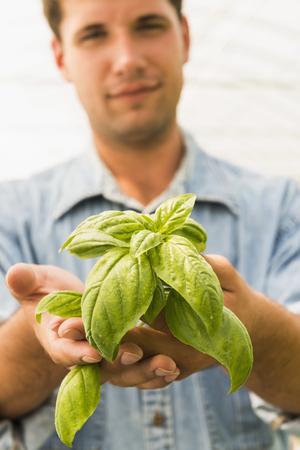 Caucasian man holding green basil plant LANG_EVOIMAGES