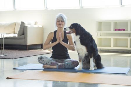 Dog watching woman doing yoga LANG_EVOIMAGES
