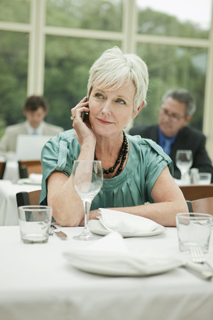 Businesswoman talking on cell phone in restaurant Banco de Imagens - 102038222