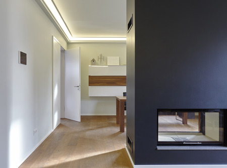 Plank floor and modern fireplace in home
