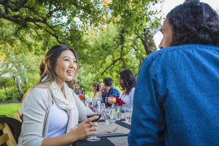 Friends enjoying wine at party outdoors Banco de Imagens - 102038148