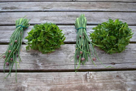 bunches of fresh herbs on wood Banque d'images