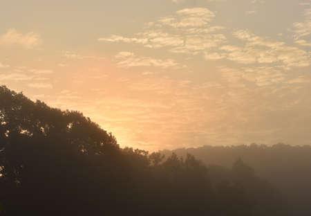 the sun coming up orange over trees Standard-Bild - 110191662