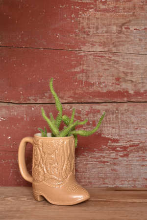 cacti growing in a cowboy boot mug