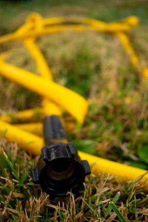 a yellow kinked garden hose.