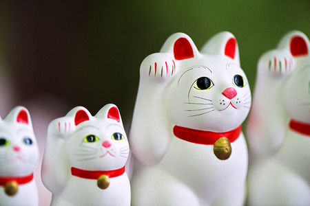 fortunate: Cat lucky, Fortunate cat, Japanese ornament Stock Photo