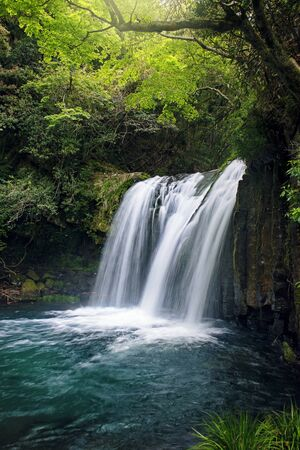 leaves green: Japanese waterfall Stock Photo
