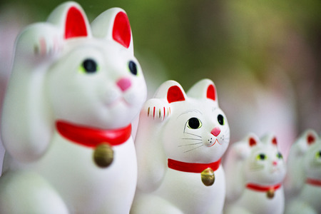 lucky charm: Lucky cat. Fortunate cat. Japanese ornament