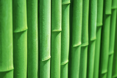 asian gardening: Bamboo.Line.Bamboo fence.