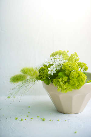 light interior: Flower arrangement, Comfortable life. Stock Photo