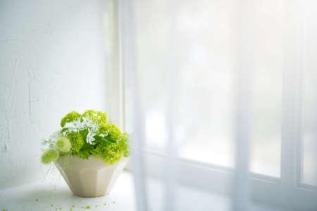 window display: Flower arrangement, Comfortable life. Stock Photo