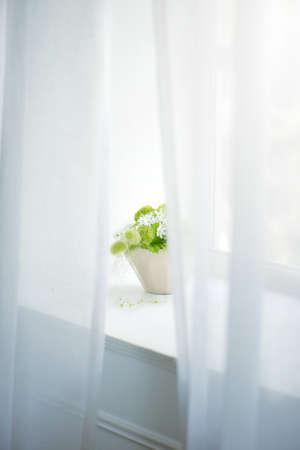 arreglo floral: Centro de flores, la vida cómoda.