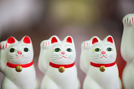 prosperous: Lucky cat. Fortunate cat. Japanese ornament