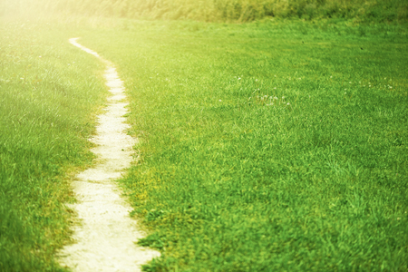 The path of steppe, a sunny stroll road. Stock Photo