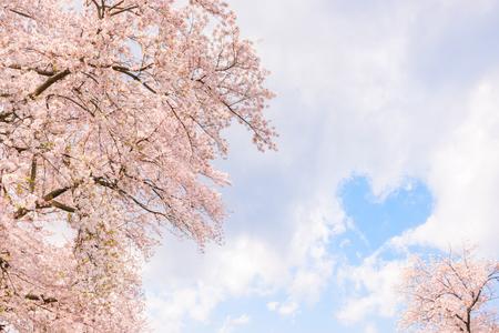 Cherry Blossoms. Japanese landscape. Heart-shaped cloud. Standard-Bild