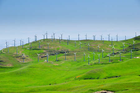 Windmill farm on rolling green hills in California