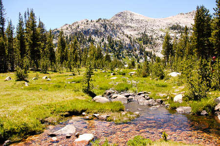 high sierra: A high sierra meadow and slow moving creek Stock Photo