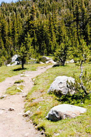 high sierra: Hiking trail in the high sierra nevada mountains, in Yosemite National Park Stock Photo