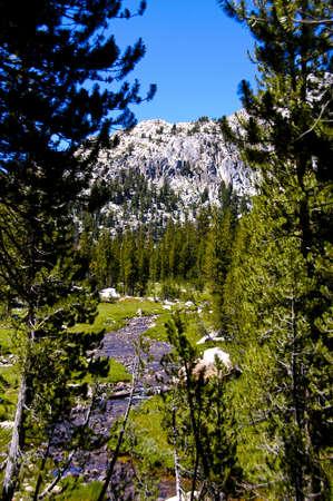 A small stream running through Yosemite National Park in summer Stock Photo