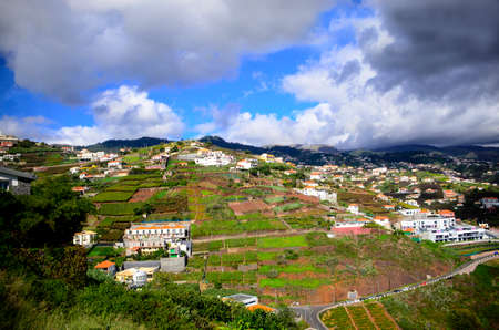 plots: Cultivated plots of land and homes in Funchal Madeira