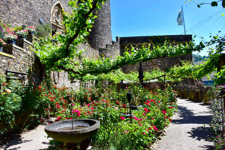 The gardens at the Medieval Castle Rheinstein in Germany Editorial