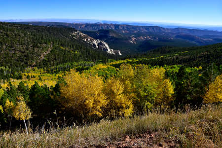 Fall in the Dixie National Forest, Utah. Imagens