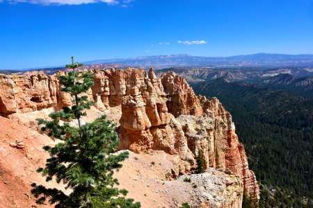 Red hoodoos at Black Birch Canyon, Bryce  Canyon National Park.
