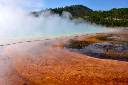 Strange formation of bacterial mats at Rainbow pool, Yellowstone National Park.