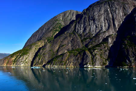 Icebergs floating in the water in Tracy Arm Fjord, Alaska.