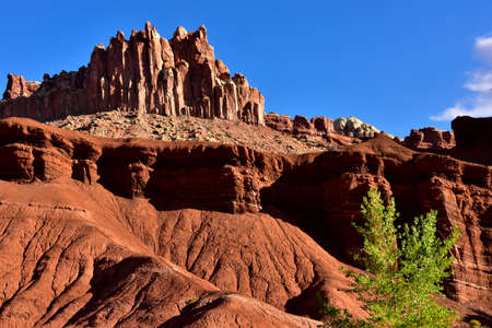 The red rocks prominent at Capital Reef National Park in Utah is called Entrada Sandstone.