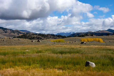 View of a meadow in Lamar Valley in fall, Yellowstone National Park. Imagens