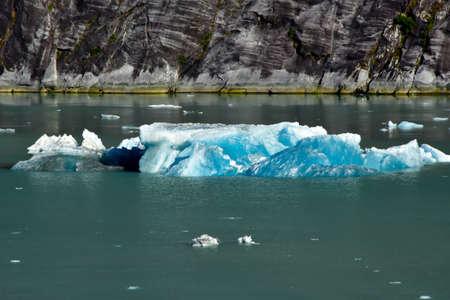Iceberg floating in the Tracy Arm Fjord in Alaska