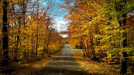 Drive through the fall leaves in Pennsylvania. Standard-Bild
