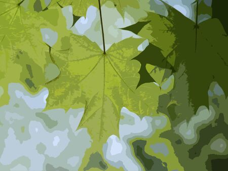 Large maple leaves: an applique simplified picture. A generalized image with the fresh leafage by khaki-green colors, on a motley background, No.2 Imagens