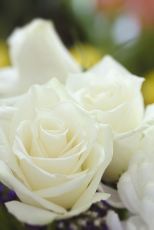 Close up picture of bouquet of flowers  Focused on white roses
