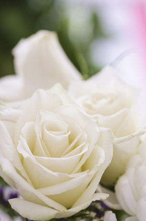 Bright close up picture of bouquet of flowers  Focused on white roses