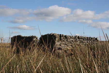 derelict: An old derelict building on the moor