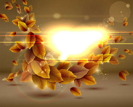 flying leaves: Shiny sensual autumn background with lights.