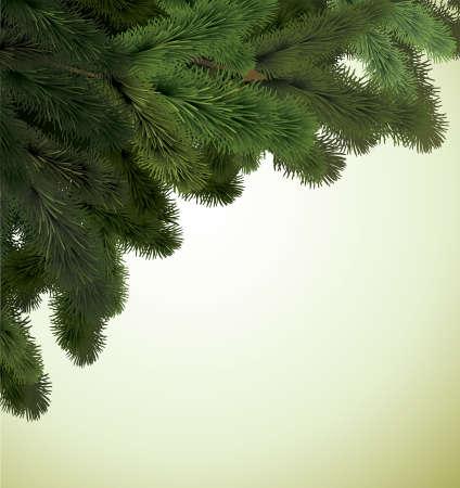 fir twig: Christmas Background.