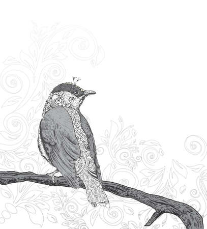 birdsong: Hand Drawn Bird on Branch   Illustration