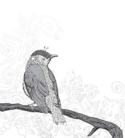 postmodern: Hand Drawn Bird on Branch   Illustration